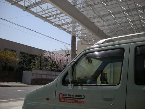 ガッちゃんと桜11041002.JPG