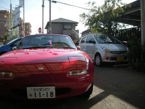 ナッちゃん11110102.JPG