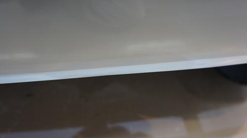 ラーダニーバアンダーコート後170318.JPG